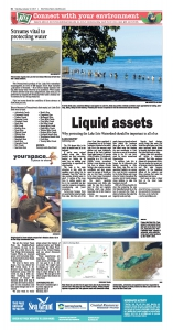 Liquid Assets NIE page