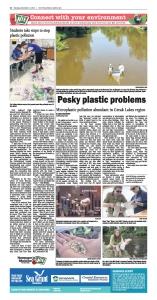 Pesky Plastic Problems NIE page