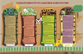 Climate Impacts to Lake Erie Agriculture Infographic