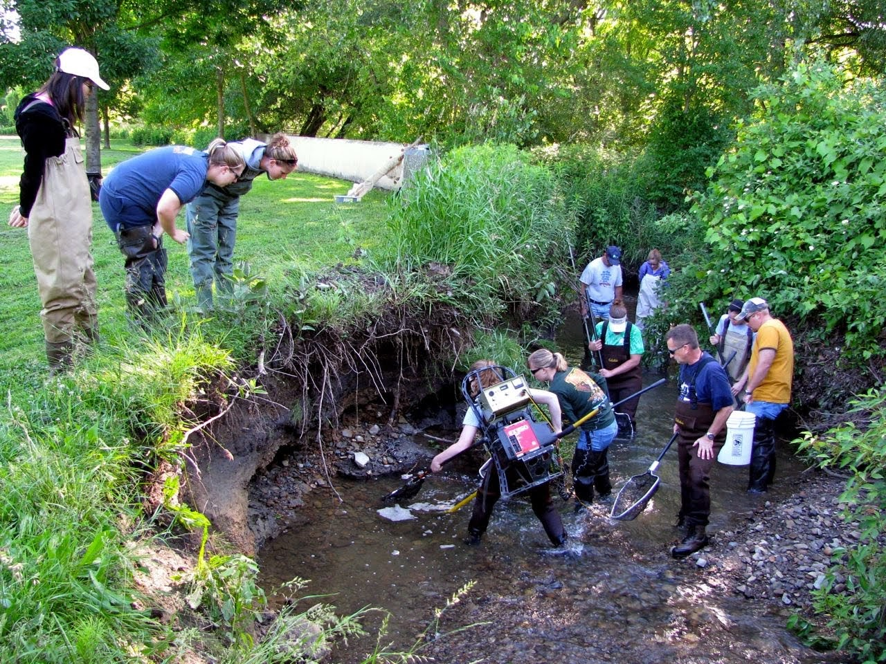 Researchers and students in Cascade Creek, Erie PA