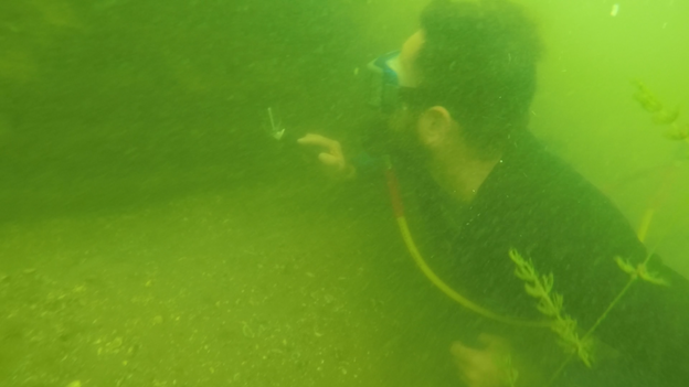 monitoring underwater structures - photo includes link to online video