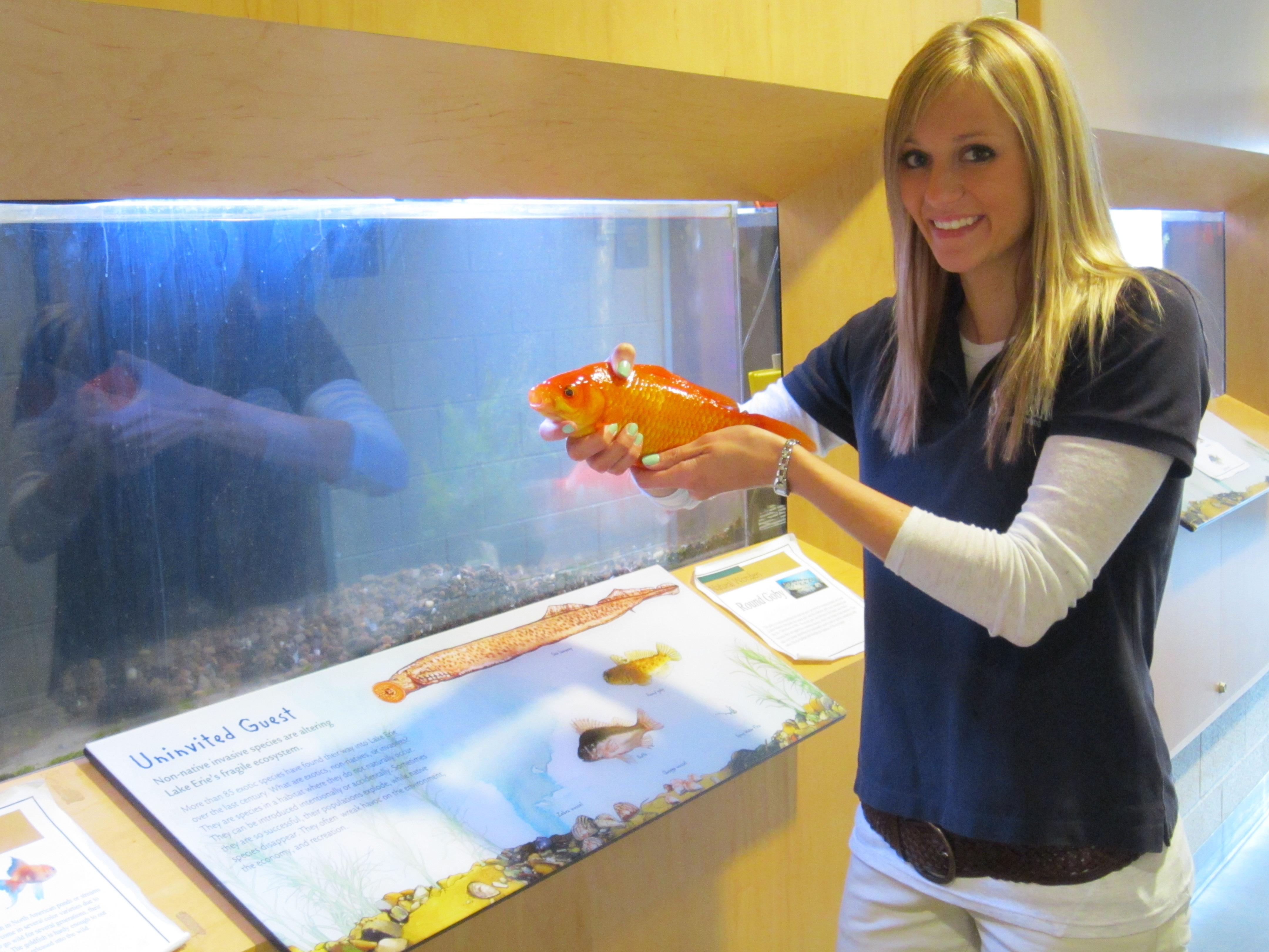 Sara Stahlman showing a goldfish