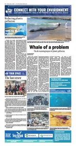 Plastic Pollution - a Whale of a Problem - May 1 2018 NIE