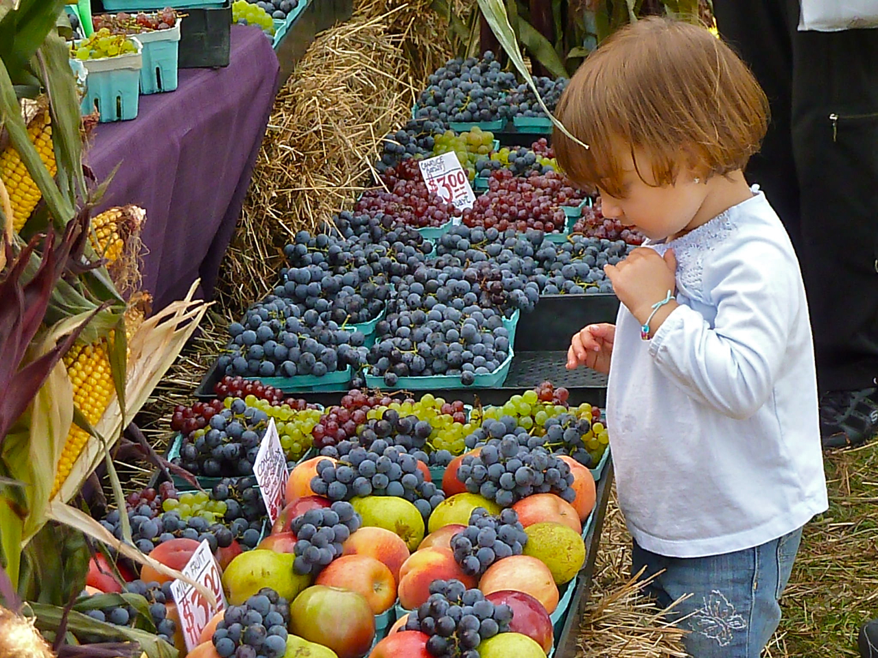 child looking at fruit