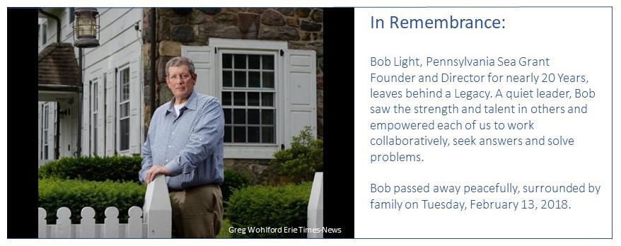 Bob Light