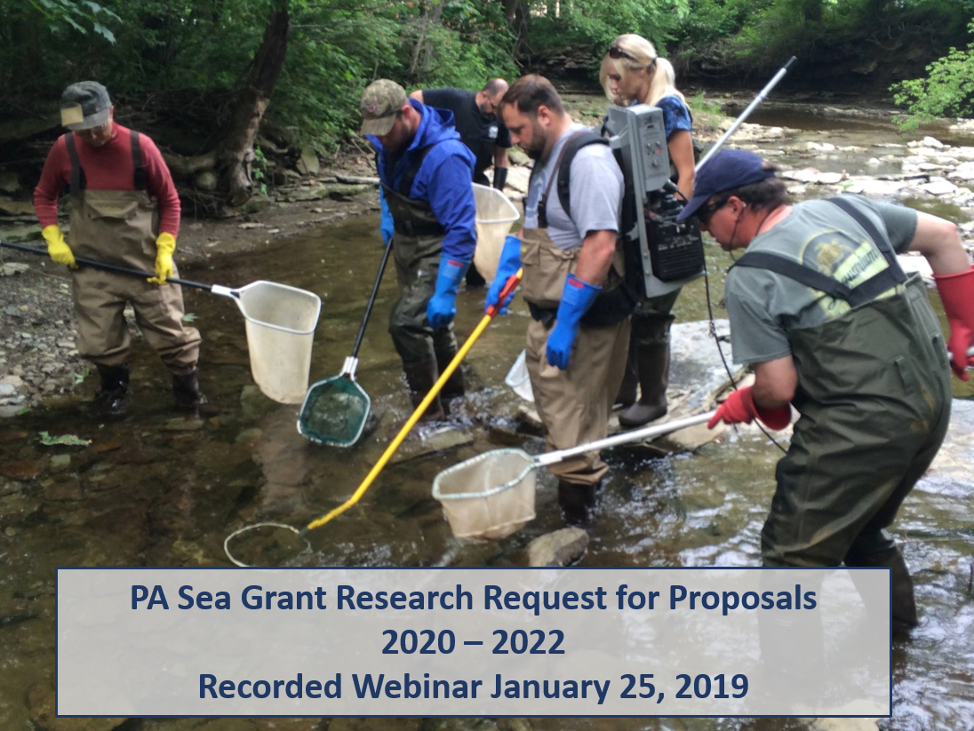 PA Sea Grant researchers studying fish species