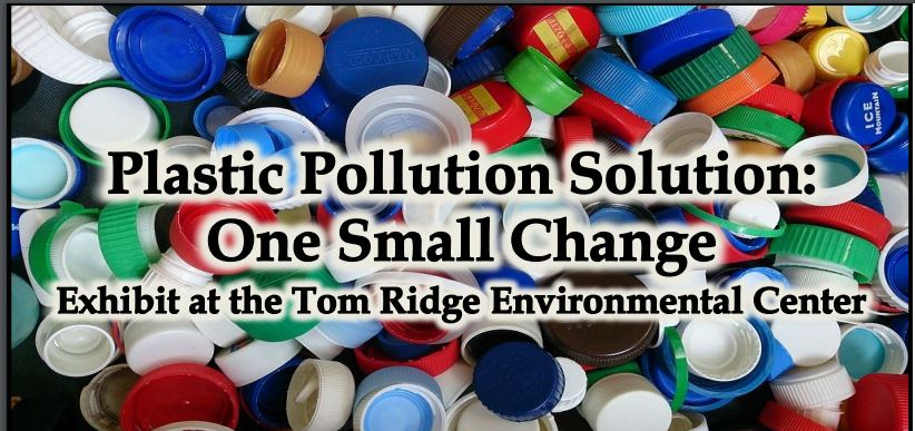 Plastic Pollution Solution event graphic
