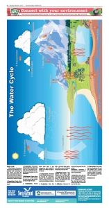 The Water Cycle NIE Page