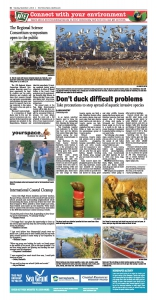 Don't Duck Difficult Problems NIE page