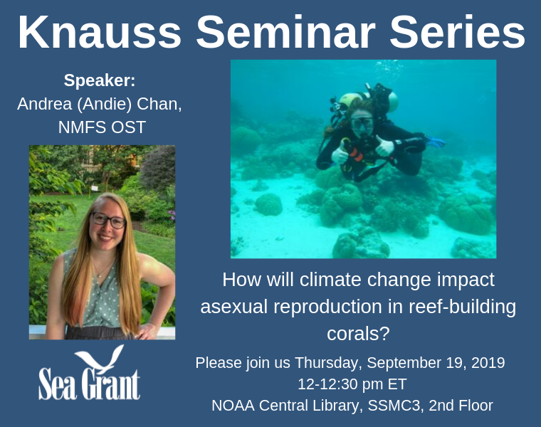 announcement graphic for knauss seminar series, featuring andrea chan
