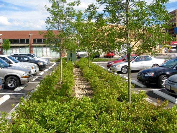 green parking lot