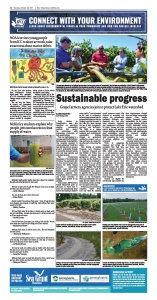 Sustainable Progress NIE October 24 2017