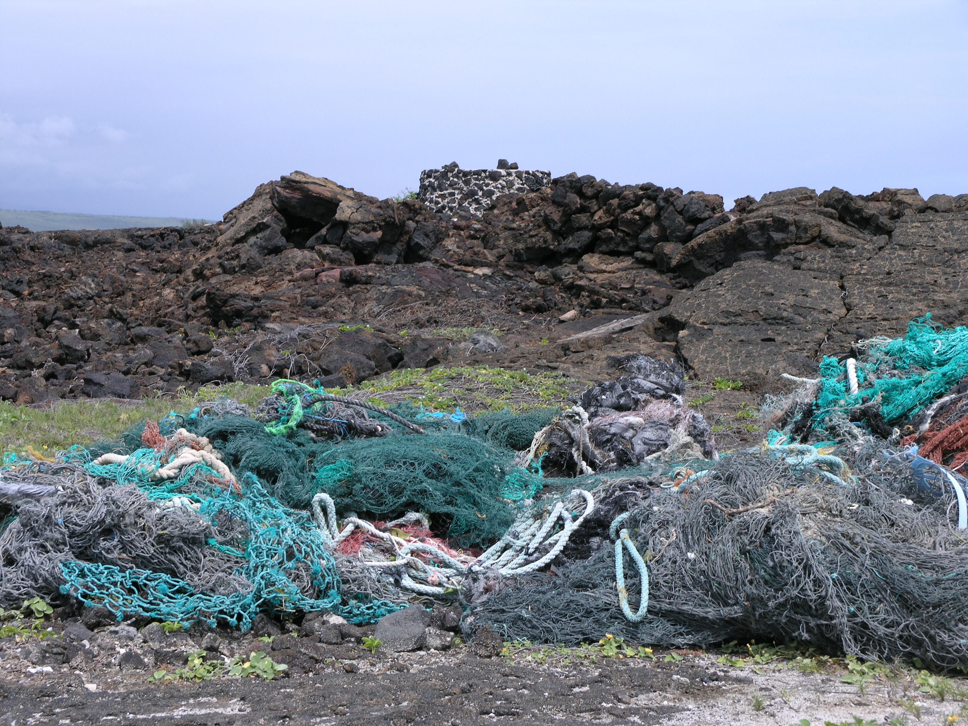 marine debris along coastline