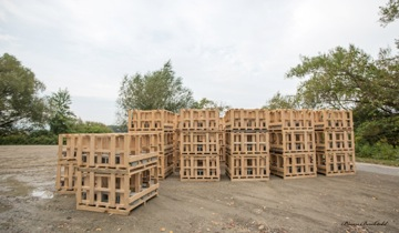 newly constructed habitat structures