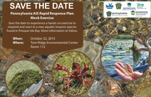 2015 RR exercise save the date