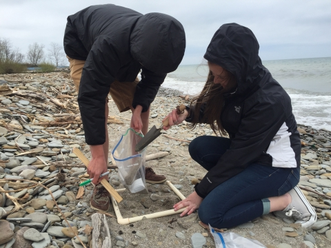 Students searching for microplastics