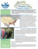 Hydrilla Fact Sheet
