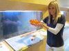 Stahlman goldfish
